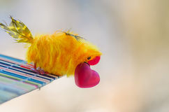 Bird with red heart in its beak is ready to give his beloved Royalty Free Stock Image