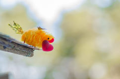Bird with red heart in its beak is ready to give his beloved Royalty Free Stock Photography