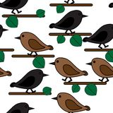 Bird repetition Stock Images