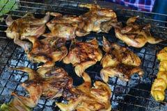 Bird roast Royalty Free Stock Photos