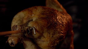A bird roasted on a spit in an oven in close-up. stock video footage