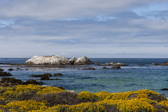 Bird Rock at 17 Mile Drive Royalty Free Stock Photography