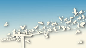 Bird roost cutout Stock Photography