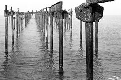 A bird on rusty, corroded pillars in ocean Royalty Free Stock Photos