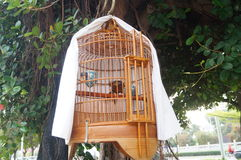 The bird's cage Stock Photography