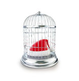 Bird's cage santa hat 3d Illustrations Royalty Free Stock Photos
