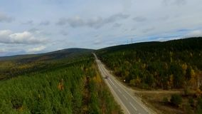 A bird's-eye aerial flight over the road autumn forest. Russia Buryatia stock footage