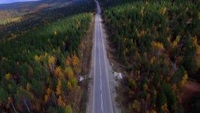 A bird's-eye aerial flight over the road autumn forest. Russia Buryatia stock footage