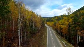 A bird's-eye aerial flight over the road autumn forest. Russia Buryatia stock video footage