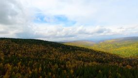 A bird's-eye aerial flight over the road autumn forest. Russia Buryatia. A bird's-eye aerial flight over the road autumn forest on the way to Lake Baikal. Russia stock video footage
