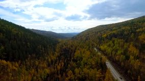 A bird's-eye aerial flight over the road autumn forest. Russia Buryatia. A bird's-eye aerial flight over the road autumn forest on the way to Lake Baikal. Russia stock video