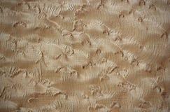 Bird's eye maple wood surface Stock Photography