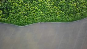 Aerial panoramic video from the drone to the forest with green spaces and agricultural field with the road dividing them. Bird`s eye view of abstract geometric stock footage