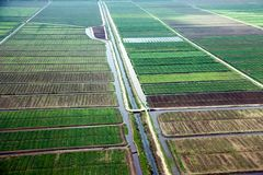 Bird`s-eye view of the fields with water channels, taken from the plane. Suburb of Georgetown, Guyana royalty free stock photo