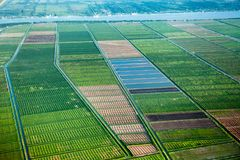 Bird`s-eye view of the fields with water channels, taken from the plane. Suburb of Georgetown, Guyana stock photo