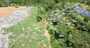 Bird`s eye view of garbage mountain from dji mavic drone in the industrial zone. stock image