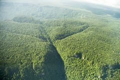 Bird`s-eye view of the jungle with hills mountains, taken from the plane. Guyana royalty free stock image