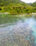 Aerial of Corals and Tropical Coastline in Papua New Guinea. A bird`s eye view of the remote island of New Ireland in Papua New Guinea shows a tranquil lagoon royalty free stock photo