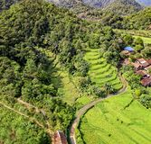 Bird's Eye View of Rice Terraces stock images