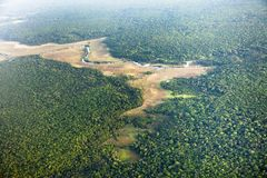 Bird`s-eye view of the river and jungle stock images
