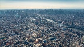 Bird`s eye view of Tokyo city. Japan stock images
