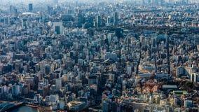 Bird`s eye view of Tokyo city. Japan stock photo