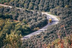 A Bird`s Eye View of a Yellow Truck and Fields with Trees in iznik. A bird`s eye view of a yellow truck and fields with olive and other fruit trees in iznik royalty free stock photos