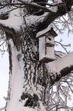 Bird's house. Jack of a bird on a tree stock photo