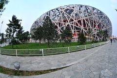 Bird's nest. Fish eye view of Bird's nest stadium in Beijing Stock Photos