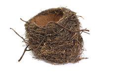 Bird's nest. Isolated on a white background stock images