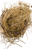 Bird\'s Nest Stock Photo
