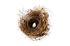 Bird's nest. By Black-Hard Art Studio Stock Image