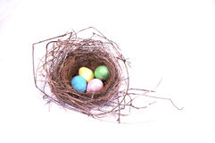 A bird's nest with 4 colorful eggs. Royalty Free Stock Image