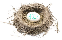 Bird's Nest with 401K Egg Royalty Free Stock Photos