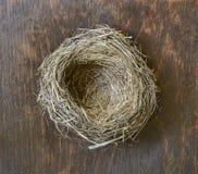 Bird's nest. Royalty Free Stock Image