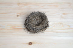 Bird's nest close up. Royalty Free Stock Image