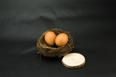 Birds nest, egg, the log block Stock Photography