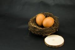 Birds nest, egg, the log block Stock Photo