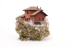 Bird's nest with the house. Bird's nest withe the house on white royalty free stock photos