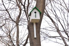 Free Bird S Nest Or Bird House. Wooden Model House In Garden.bird House With Bokeh Light Background . The Little Squirrel S House Bui Royalty Free Stock Photo - 111246575