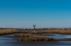 Bird's Nest in the Salt Marshes. Bird's nest built in the Marshes on a crisp Autumn day Stock Photography