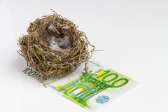 Bird's nest on white background with banknote Royalty Free Stock Image