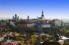 Bird's view on the old Tallinn Royalty Free Stock Images