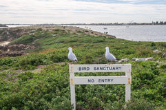 Bird Sanctuary Royalty Free Stock Photo
