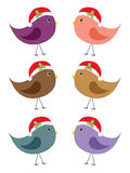 Bird in Santa hat Royalty Free Stock Photos