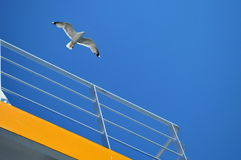 Bird seagull flying over the boat. In a blue sky making great contrast with a yellow balcony Stock Photography