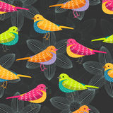 Bird seamless pattern on black background Royalty Free Stock Images