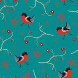 Bird Seamless Pattern. Bullfinch birds on a dark background. With red berries of rowan and brier. Winter/Merry Christmas Collection.Vector Illustration Royalty Free Stock Images