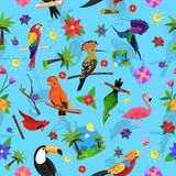 Bird Seamless Pattern Stock Image