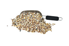 Bird seed. A scoop of wild bird seed isolated on a white background Stock Photos